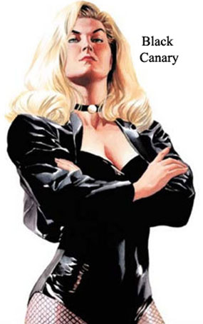 Welcome to the Comic Book Leather Jackets, Comic Book Heroes